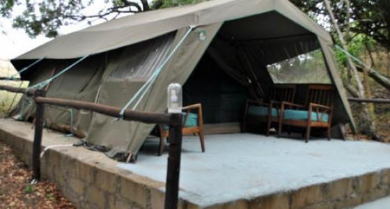 Four man tent exterior