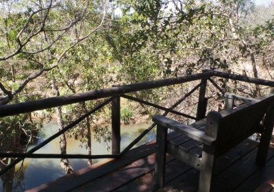 View from treehouse balcony